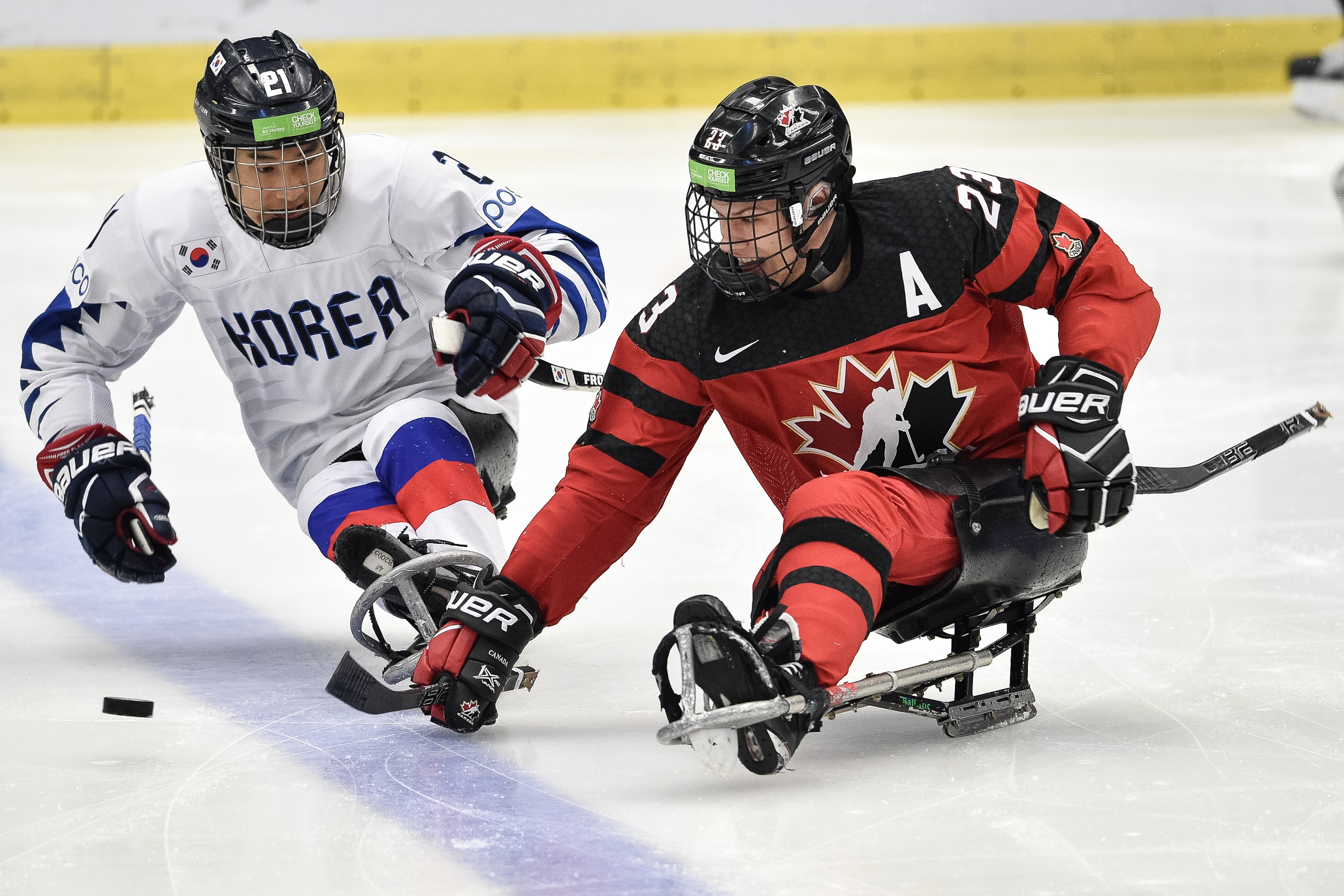Liam Hickey in action at the 2019 World Para Ice Hockey Championships