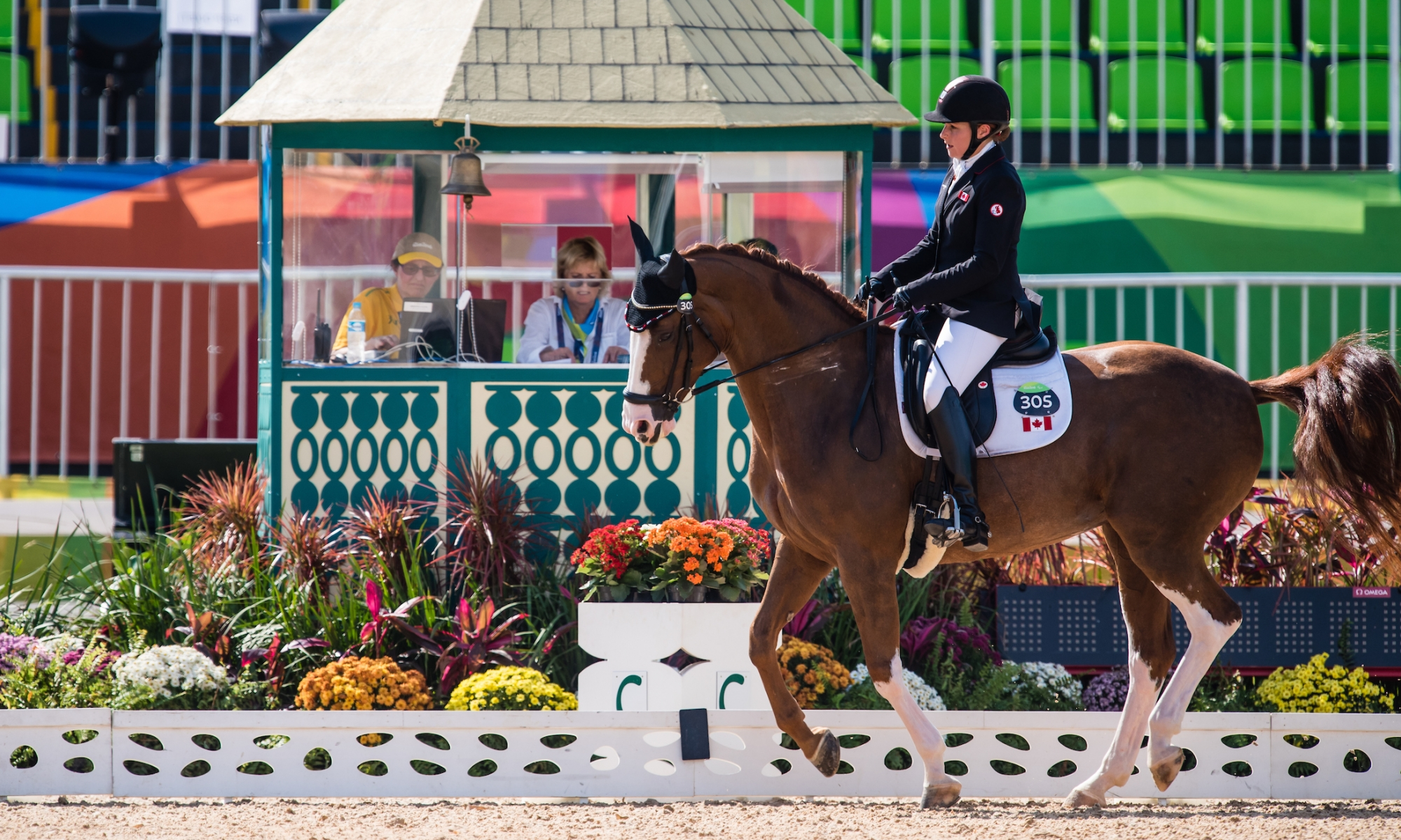 Sheffield in dressage