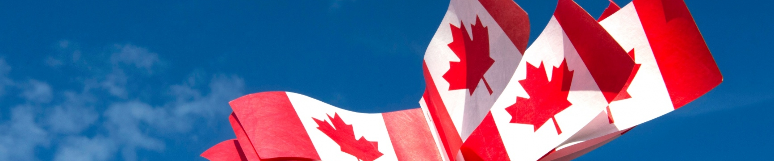 Picture of Canadian Flags