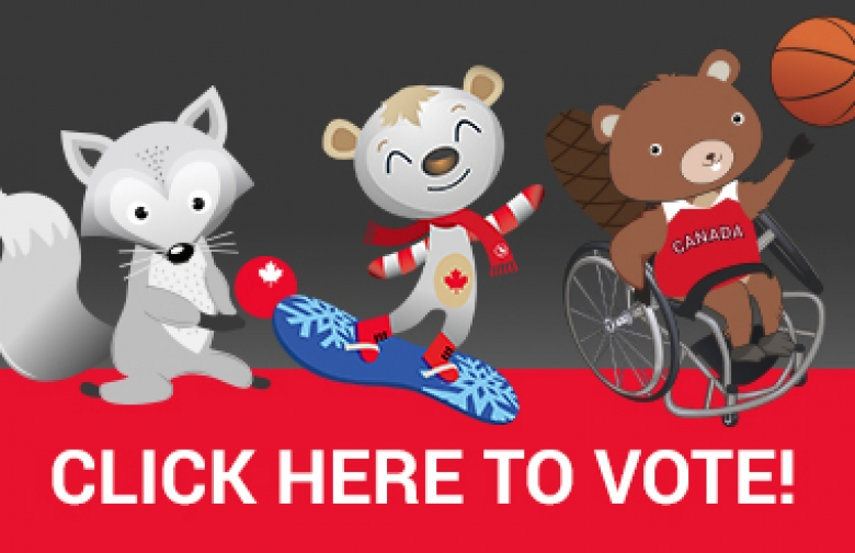 Click here to vote for the mascot